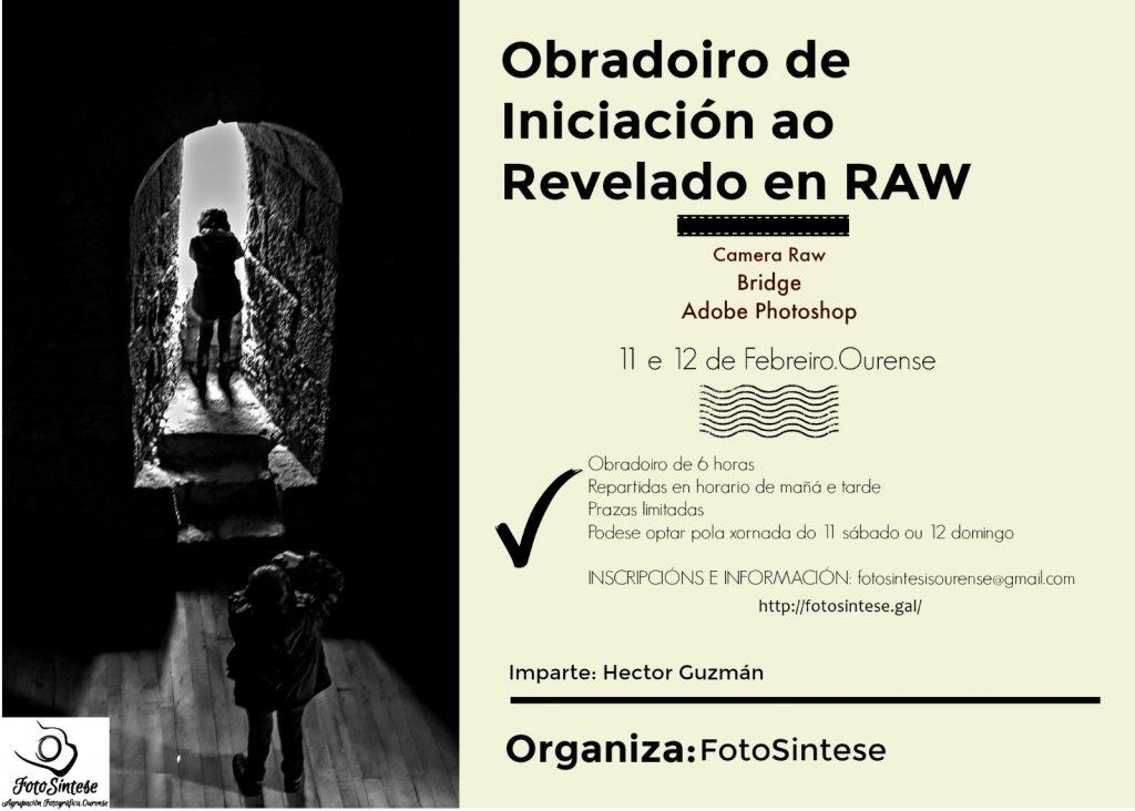 Cartel curso RAW de Hector Guzman